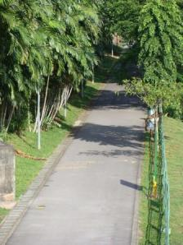 Jogging Track 1